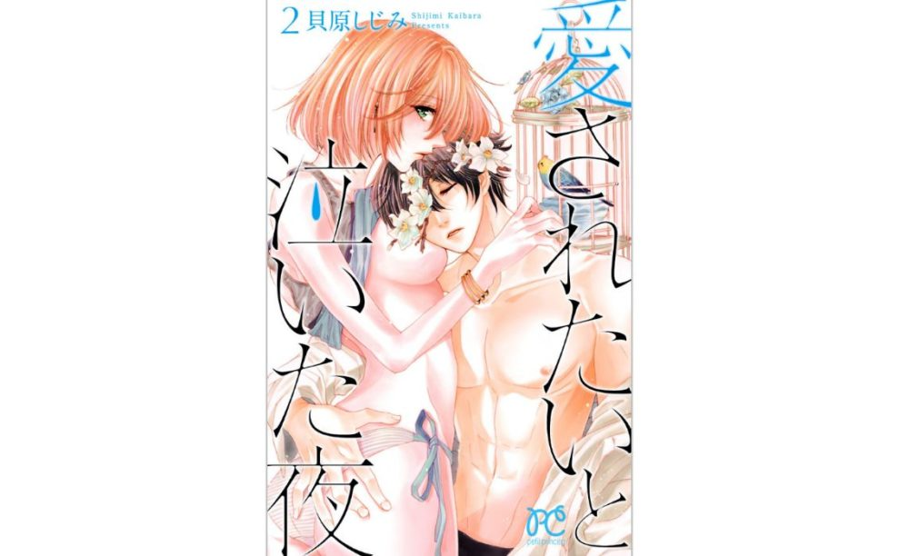 愛されたいと泣いた夜【第2巻】のネタバレ・感想!やっぱり幸せになれないの・・・